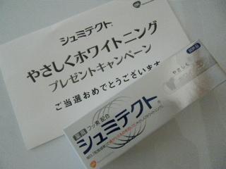 BLOG2058.JPG